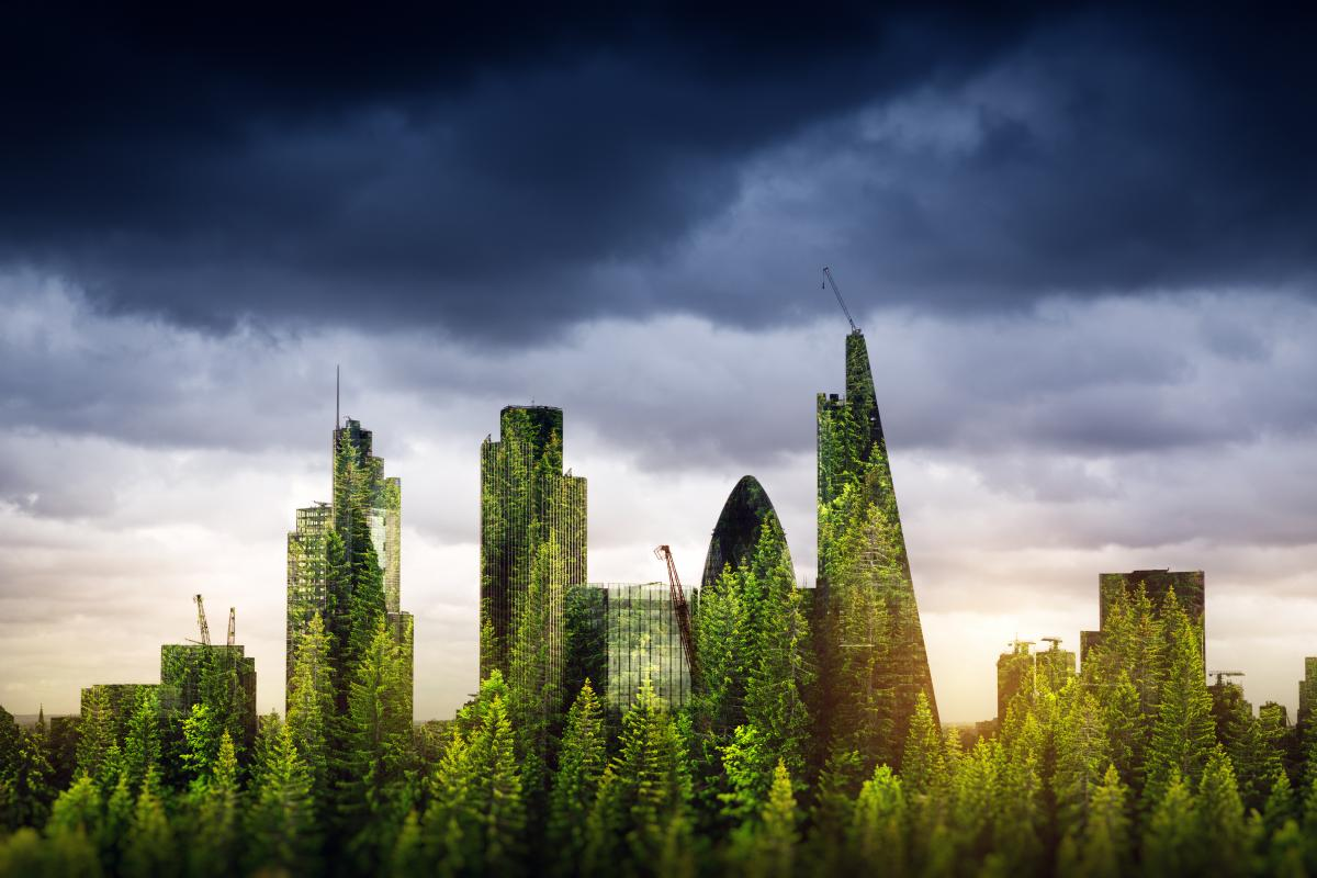 london-skyline-composed-of-images-of-trees