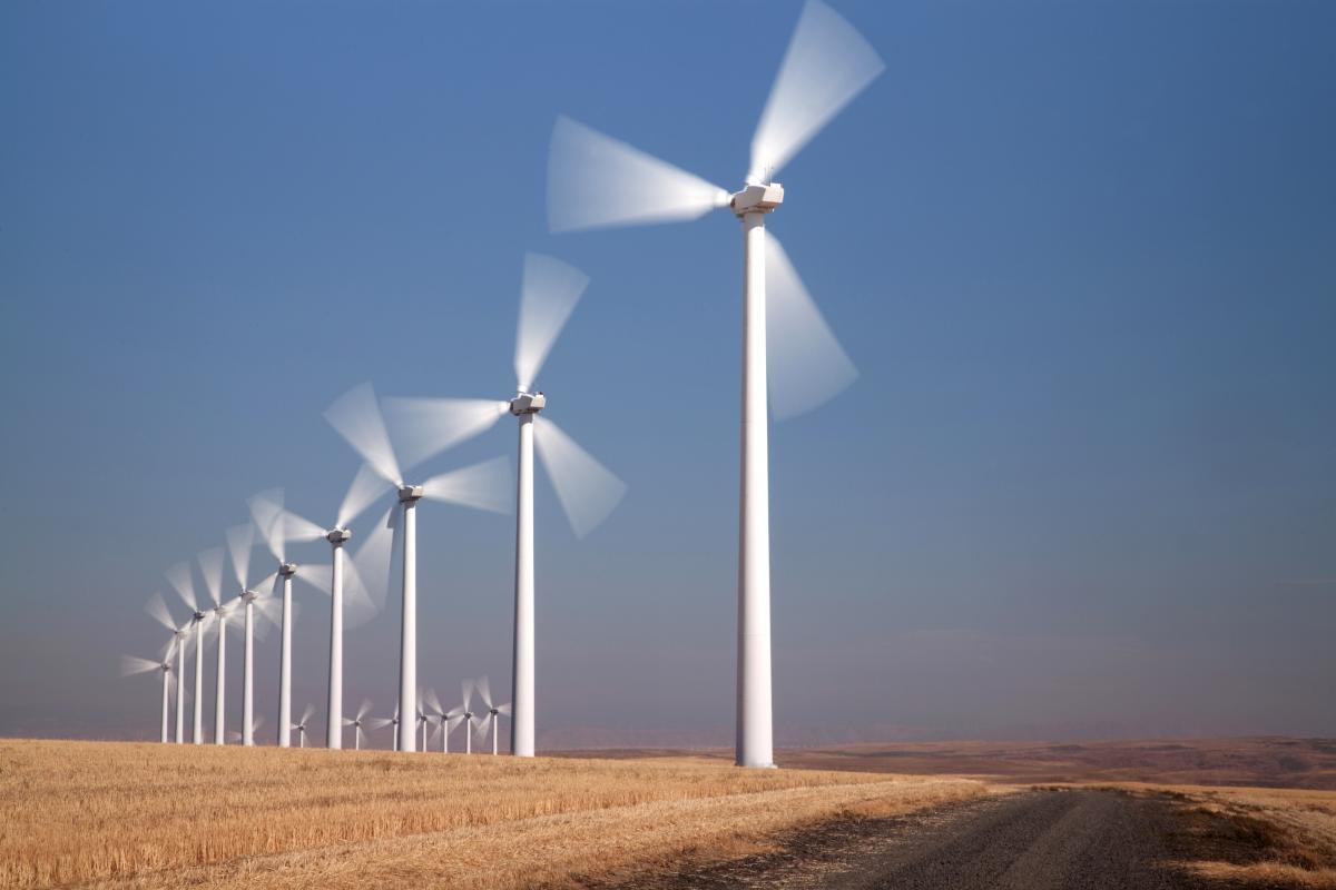 row-of-windmills