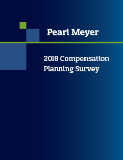 Compensation planning report cover